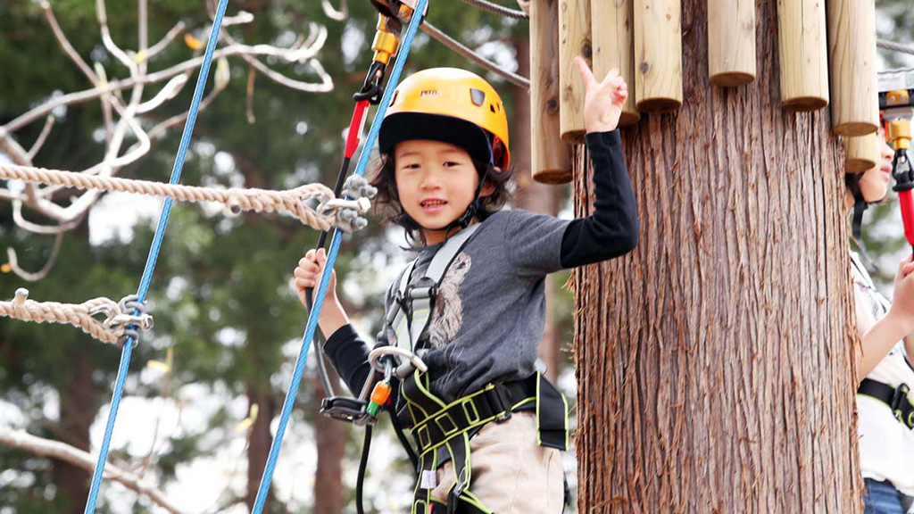 Lotte Arai Resort-Adventures-Tree Adventure