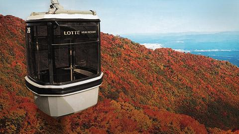 gondola, maple, tourism